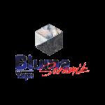 Blume Logo_Çalışma Yüzeyi 1